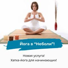 Новая услуга: «Хатха-йога для начинающих»